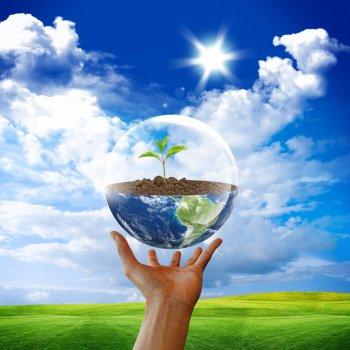 Környezetvédelmi Szabályzat