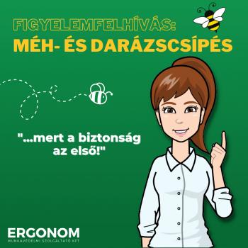 Figyelemfelhívás a méh- és darázscsípés veszélyeivel kapcsolatban